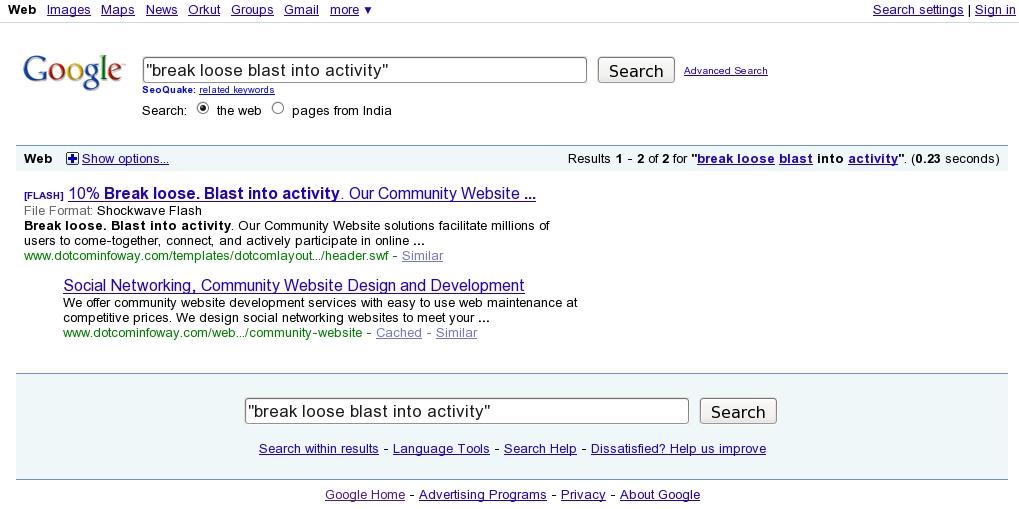 Google-SERP-Showa-Flash-Content